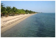 belize beach front property ID 100