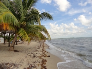 belize beach front property ID 330